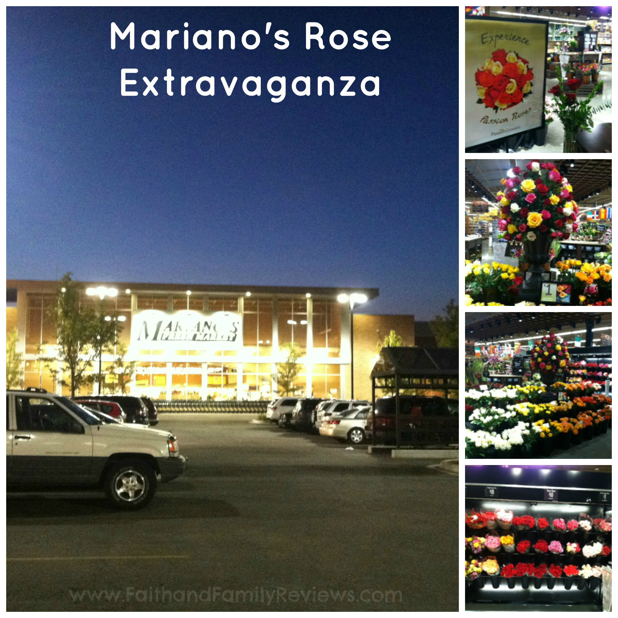 Mariano's Rose Collage_
