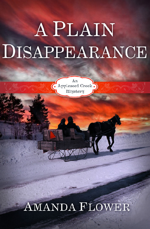 A Plain Disappearance by Amanda Flower