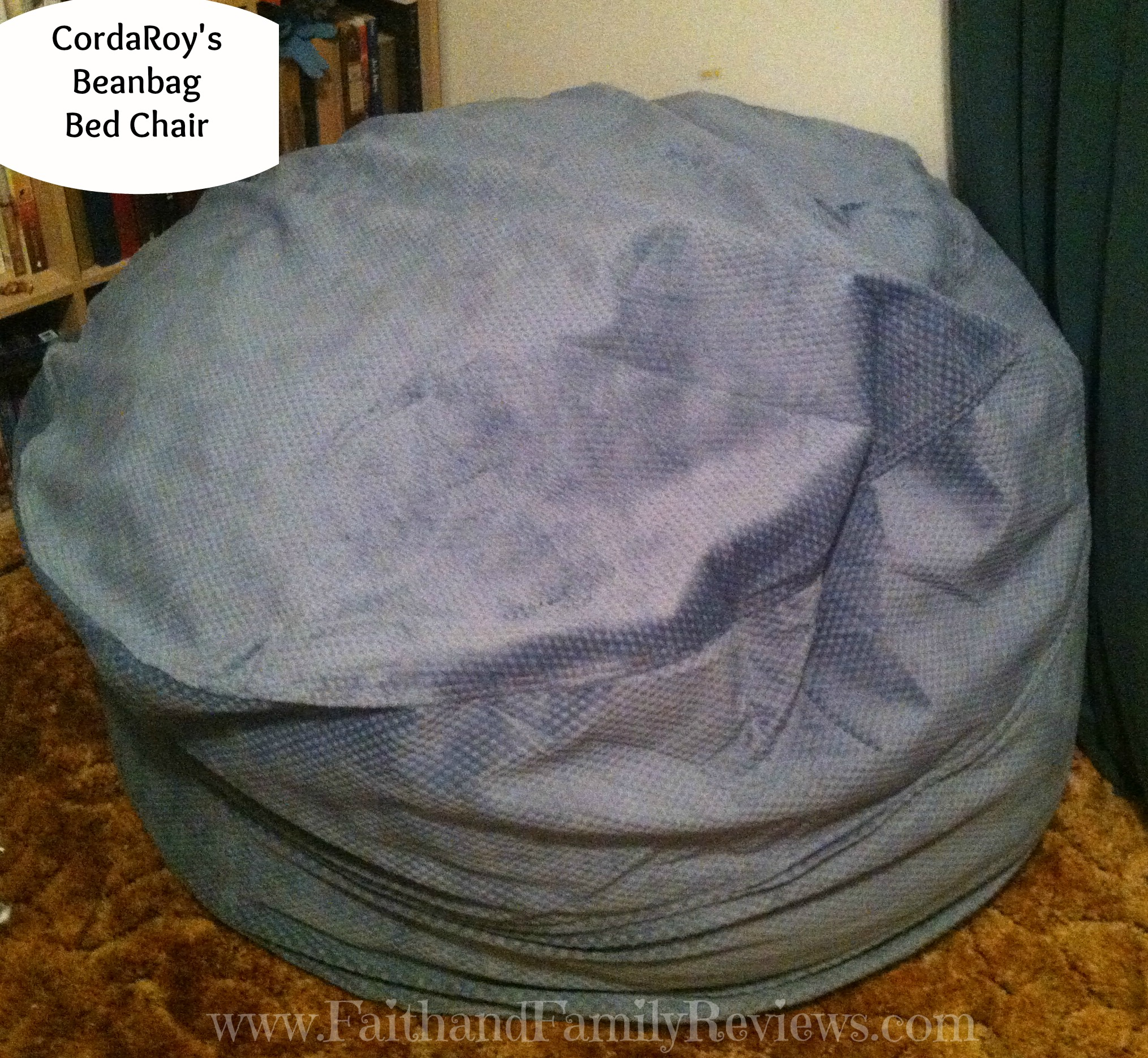CordaRoy's Beanbag Bed Chair_