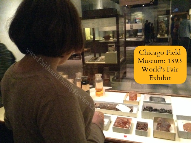 FFR Chicago Field Museum 5