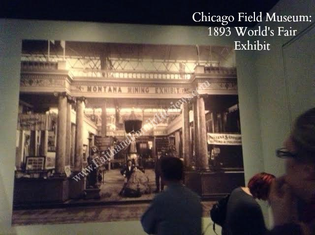 FFR Chicago Field Museum 6