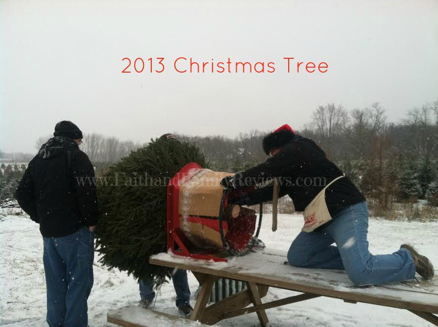 FFR 2013 Christmas Tree buying