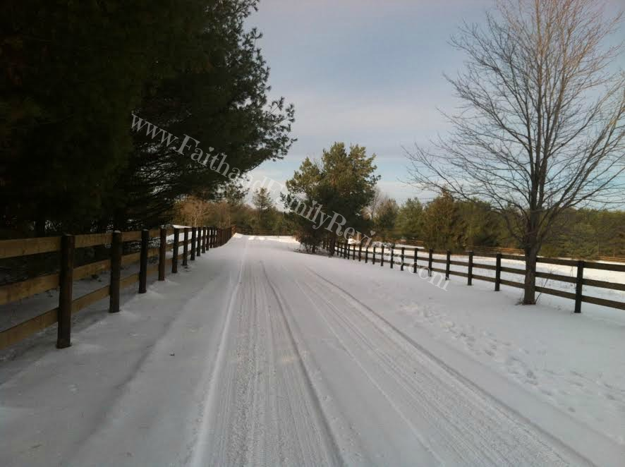 FFR Pretty Winter Lane
