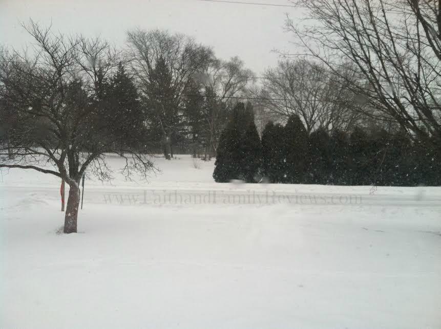 FFR Snow Fort