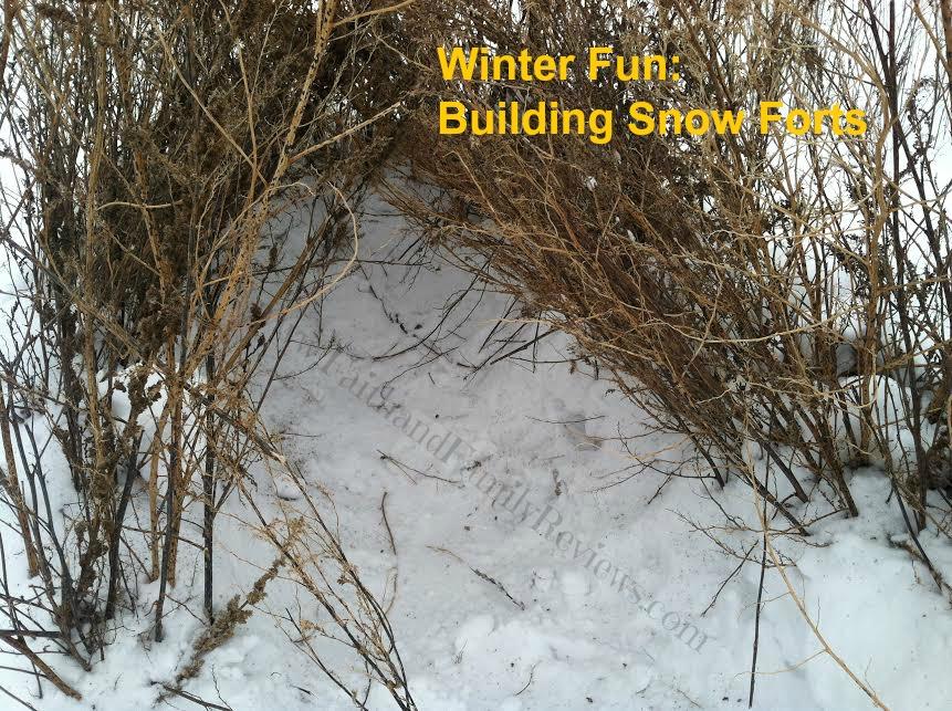 FFR Snow Fort_1
