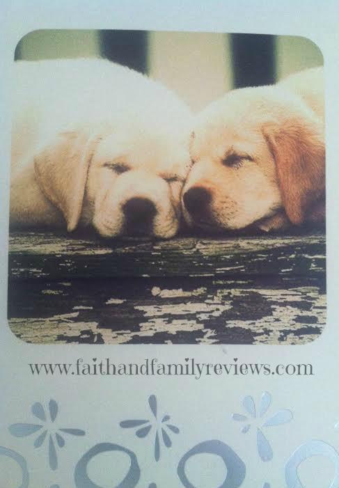 FFR Dog Card 110714